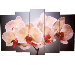 Картина модульная Орхидеи