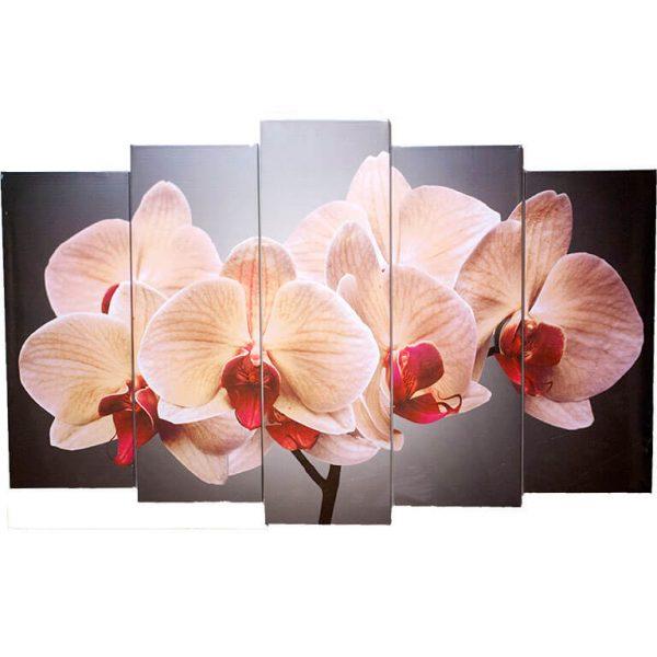 Картина модульная Орхидеи KM016