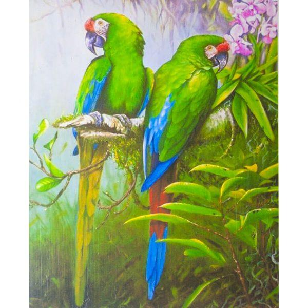 Картина по номерам Попугаи